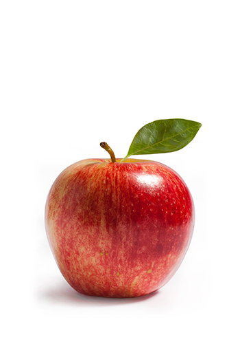 Apple Varieties - Michigan Apples